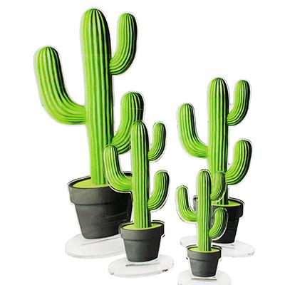 4 cactus vert